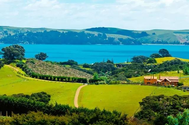 如何快速融入新西兰的生活?